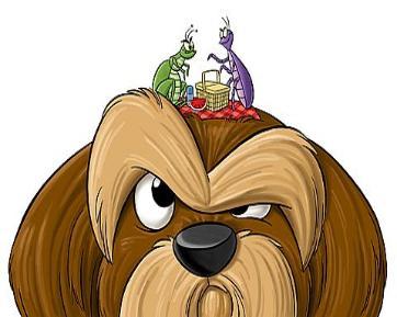 pulga imagen dibujo caricatura pulga perro