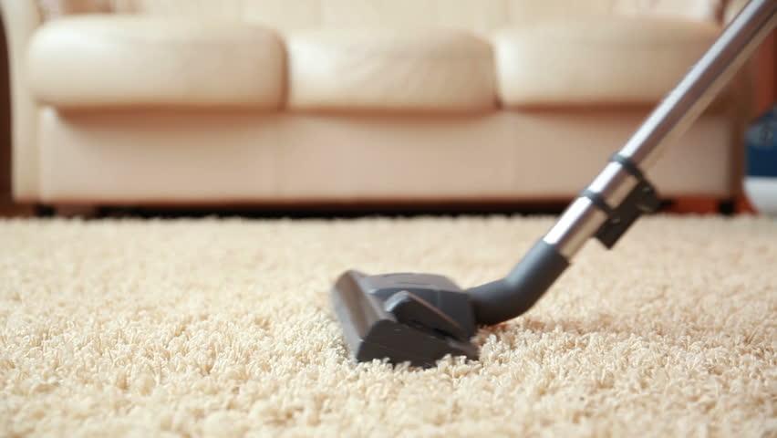 limpieza con aspiradora tratamiento ambiental pulgas